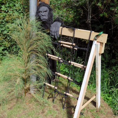 Gorilla guarding the cargo net climbing station in the Friends' Obstacle Course.