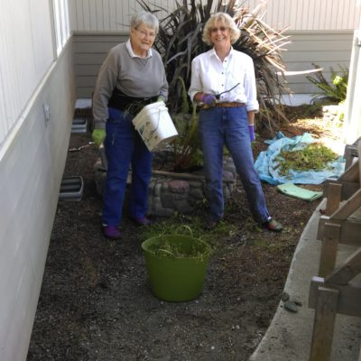 Barbara Johnson and Linda Stokes completely cleared the area of weeds